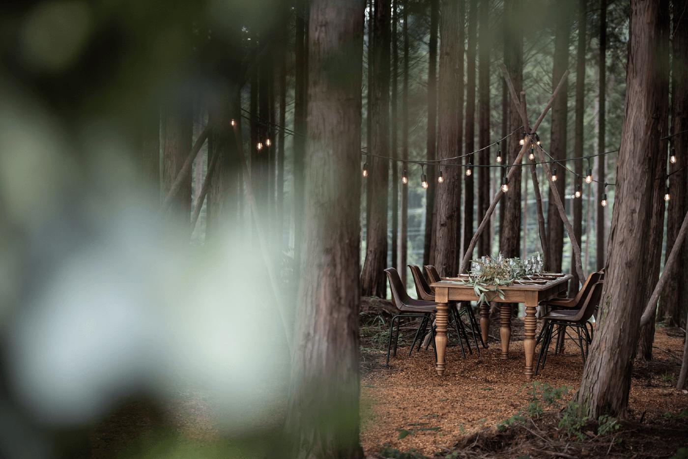 森のウエディング
